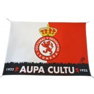 Bandera Aupa
